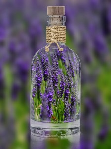 lavender-in-bottle