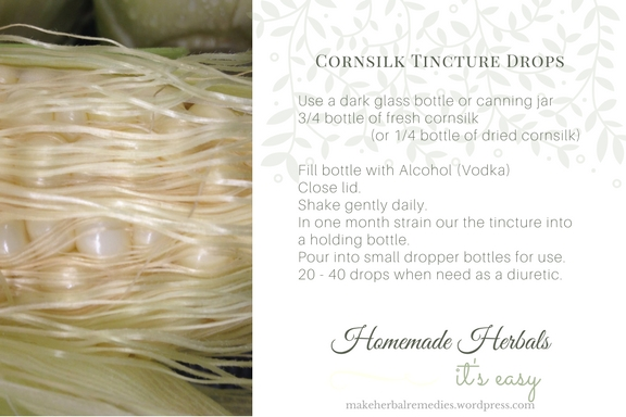 make-herbal-remedies-recipe-cornsilk-tincture