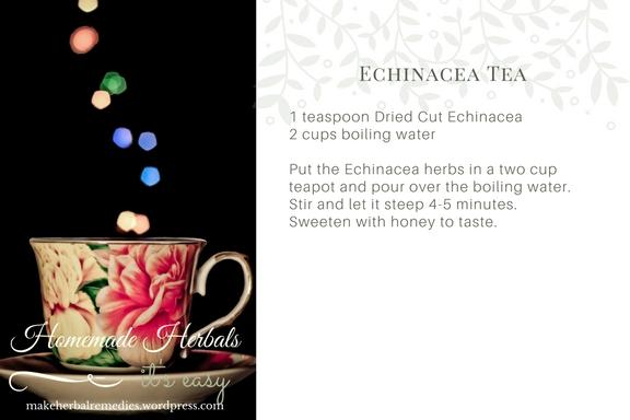 Homemade Herbals Recipe Echinacea Tea .jpg