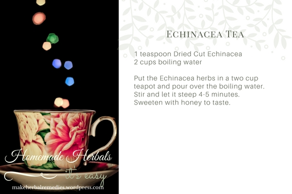 Homemade Herbals Recipe Echinacea Tea .jpg