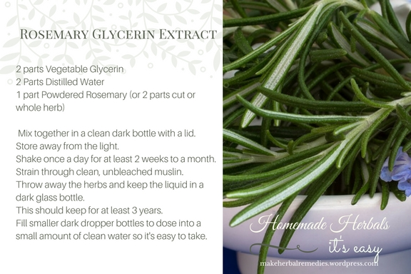 Homemade Herbals Recipe Rosemary Glycerine Extract4.jpg