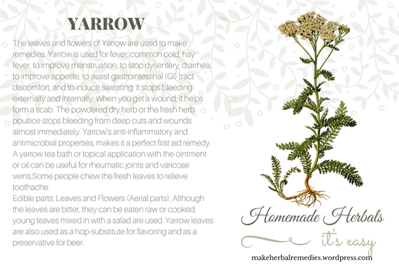 Homemade Herbals Yarrow Herb