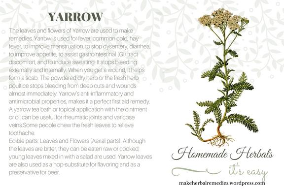 Homemade Herbals Yarrow Herb